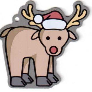 Rudolf geo popotnik-0